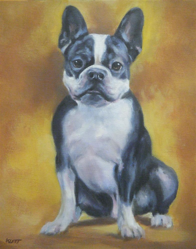 """""""Boston Terrier"""" original fine art by Tracy Klett"""