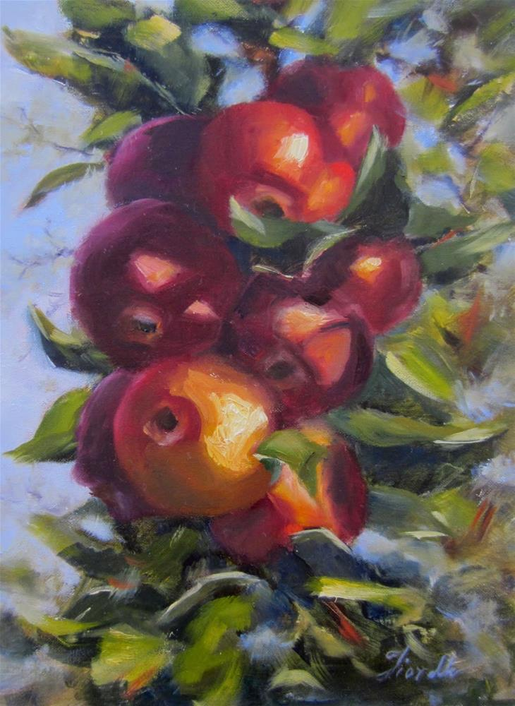"""Apples in the Sun"" original fine art by Pat Fiorello"