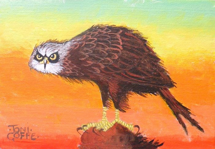 """Red Kite"" original fine art by Toni Goffe"