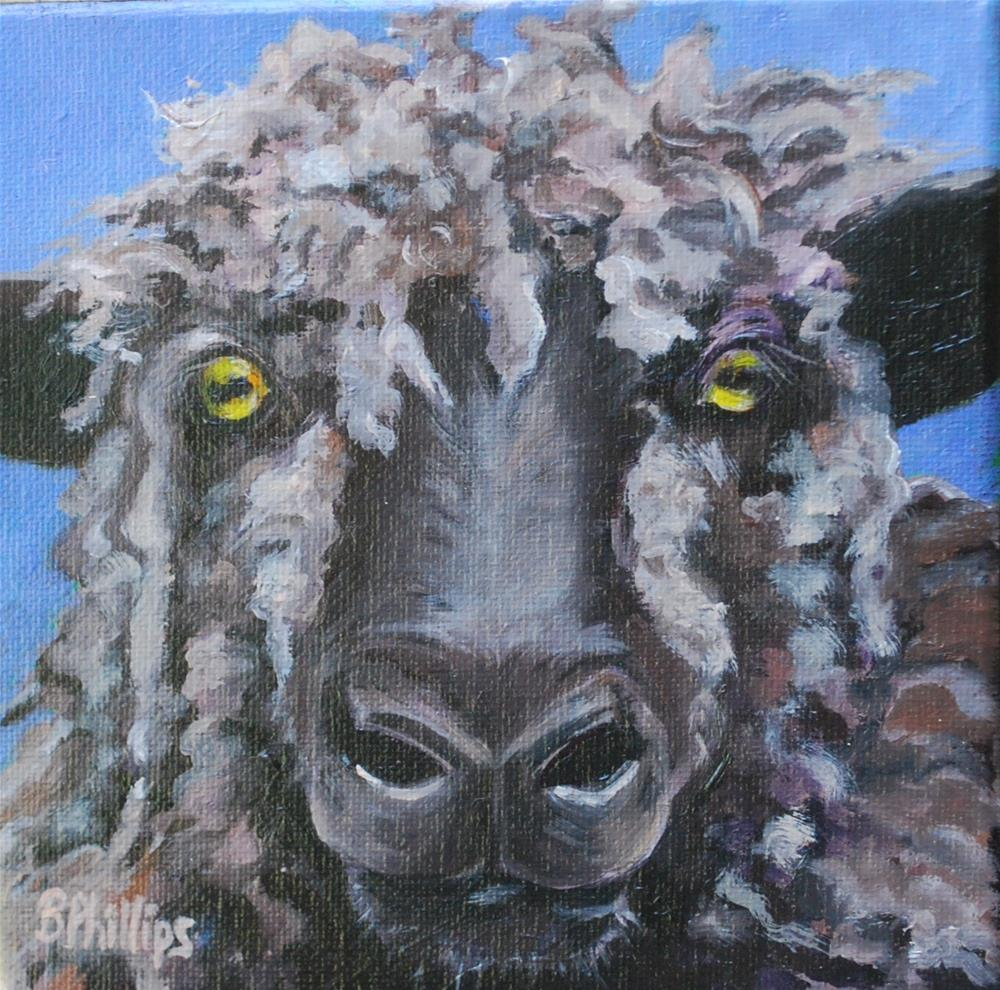 """Black sheep"" original fine art by Beverley Phillips"