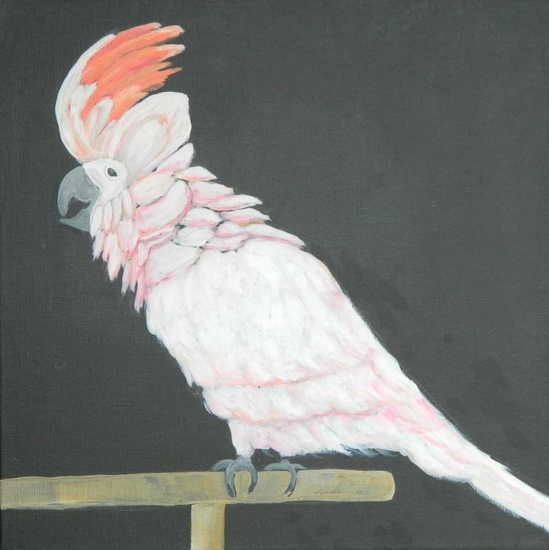 """Sula, Moluccan cockatoo"" original fine art by Gloria Urban"