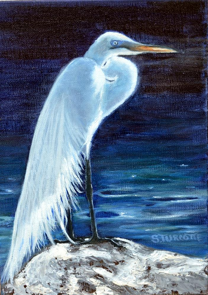 """Morning Egret"" original fine art by Shayna Turcotte"