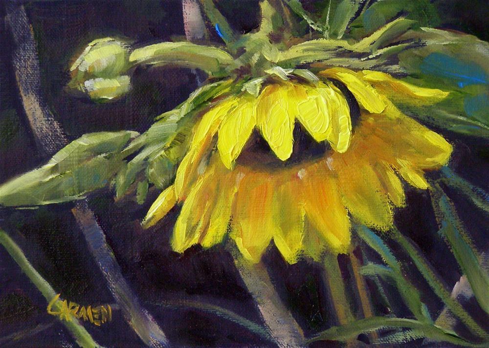 """Humble Sunflower, 7x5, Oil on Canvas Board"" original fine art by Carmen Beecher"