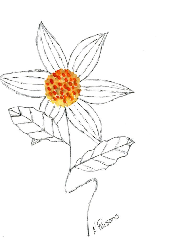 """Orange at the Center"" original fine art by Kali Parsons"