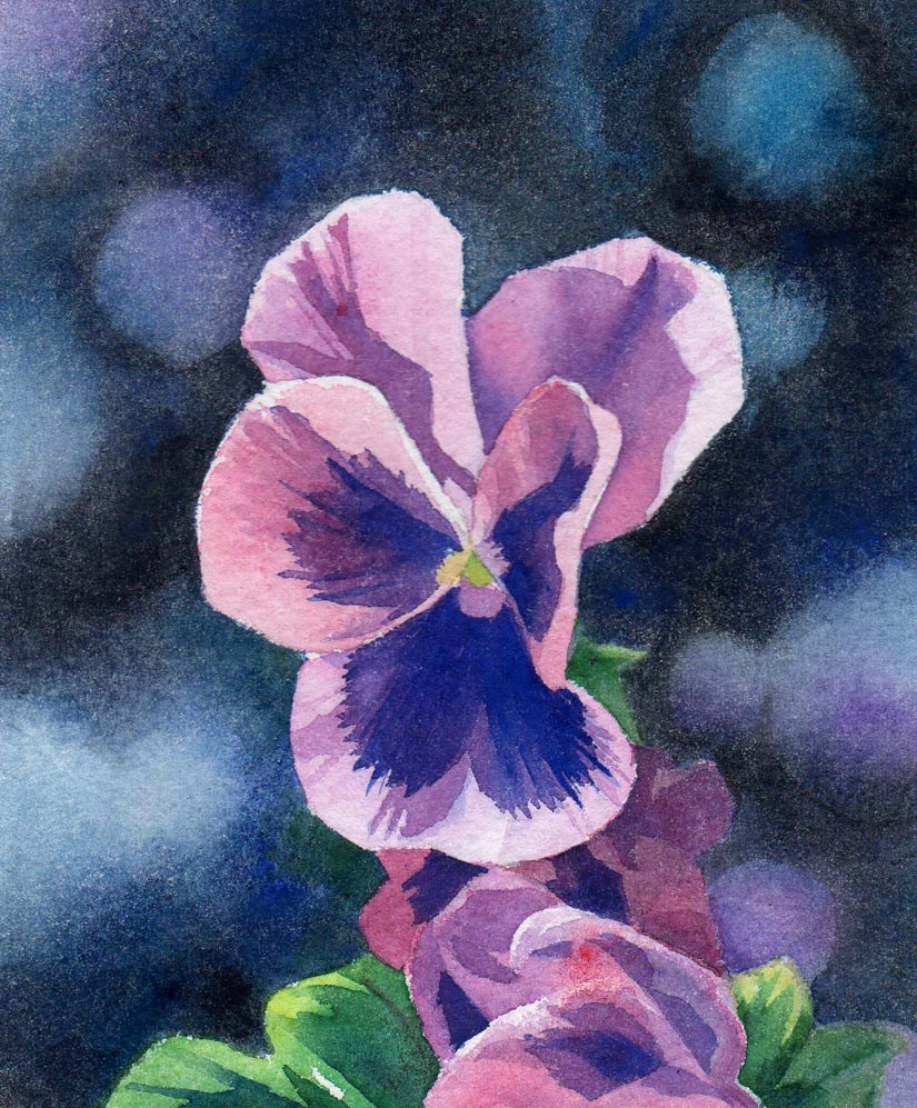 """PANSY watercolor floral painting"" original fine art by Barbara Fox"