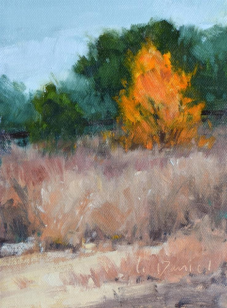 """Autumn Blaze"" original fine art by Laurel Daniel"