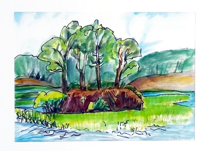 """Trees on Bank"" original fine art by Selby Minner"