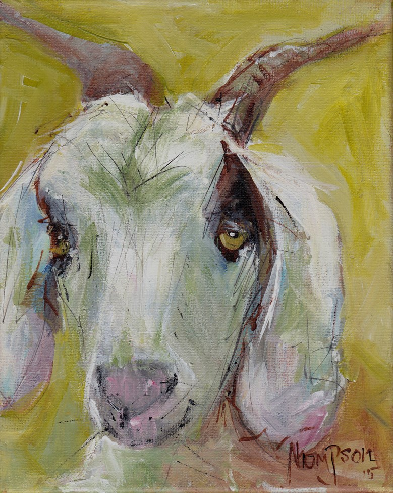 """Sleepy Goat"" original fine art by Norma Thompson"