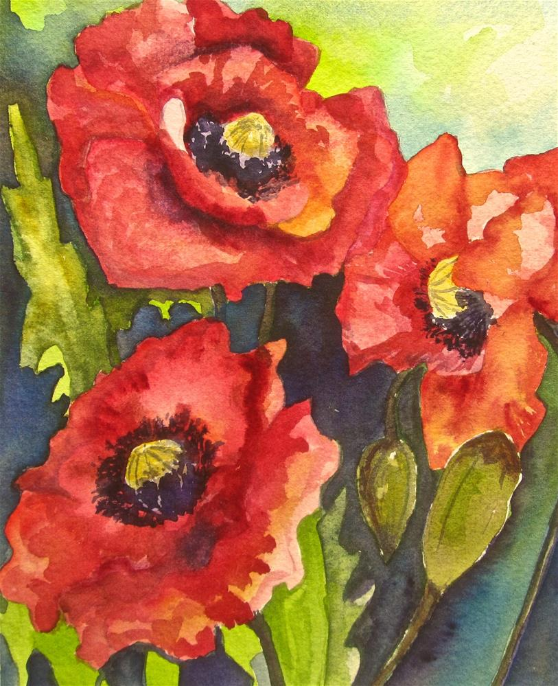 """Poppies"" original fine art by Patricia MacDonald"