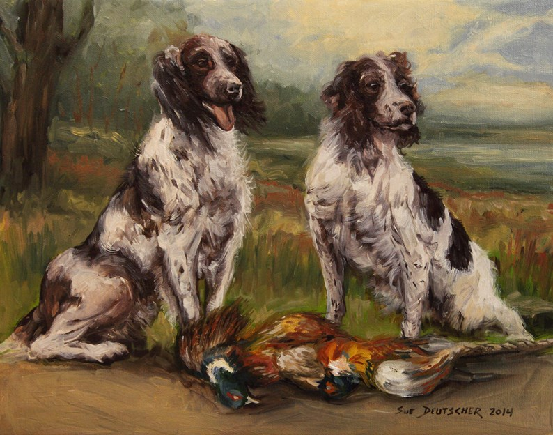 """English Springer Spaniel"" original fine art by Sue Deutscher"