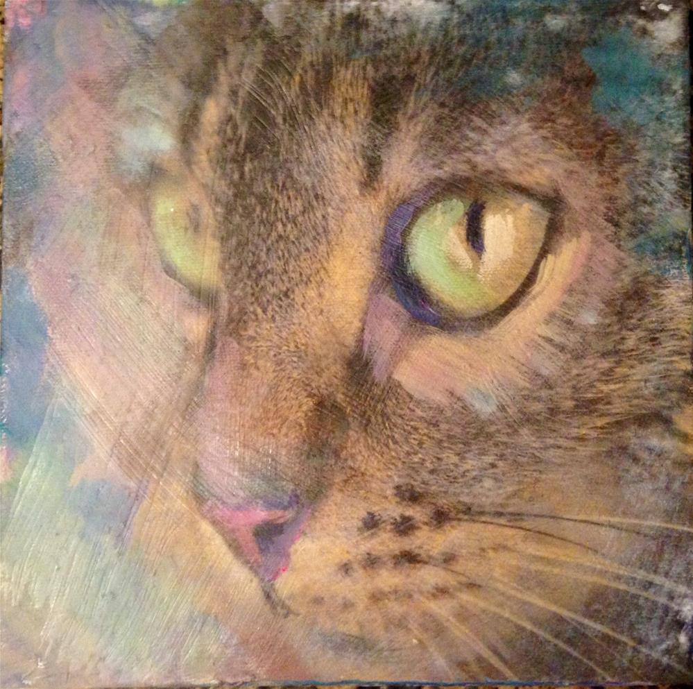 """Tabby"" original fine art by barbara quast"