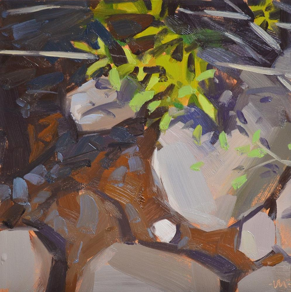 """Rocks and Shadows"" original fine art by Carol Marine"