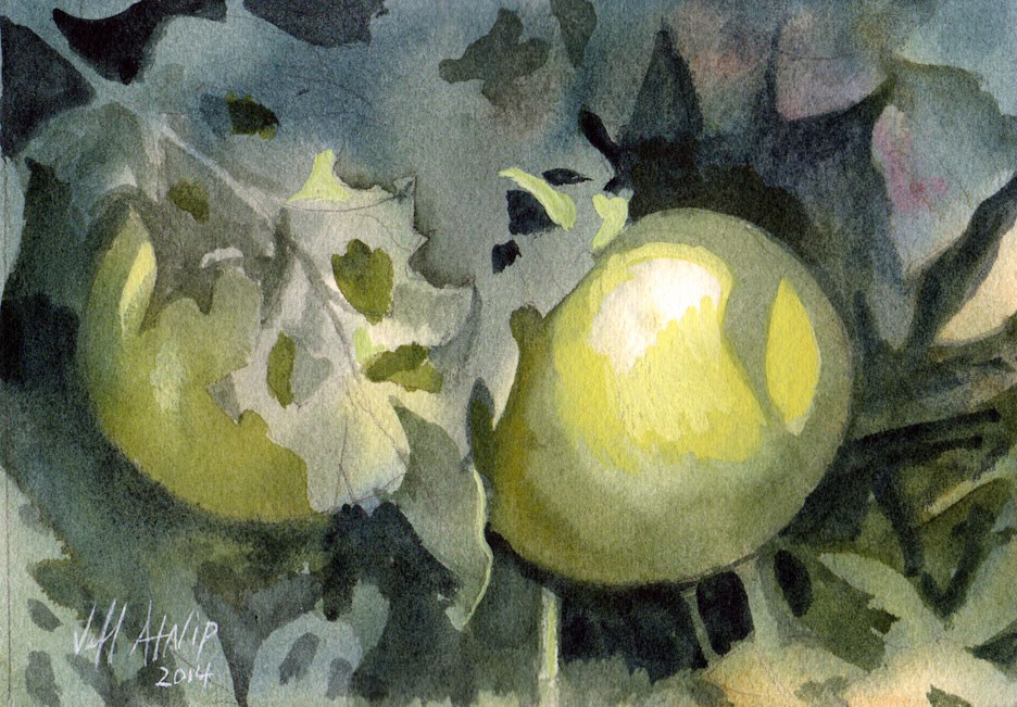 """Green Tomatoes #2"" original fine art by Jeff Atnip"