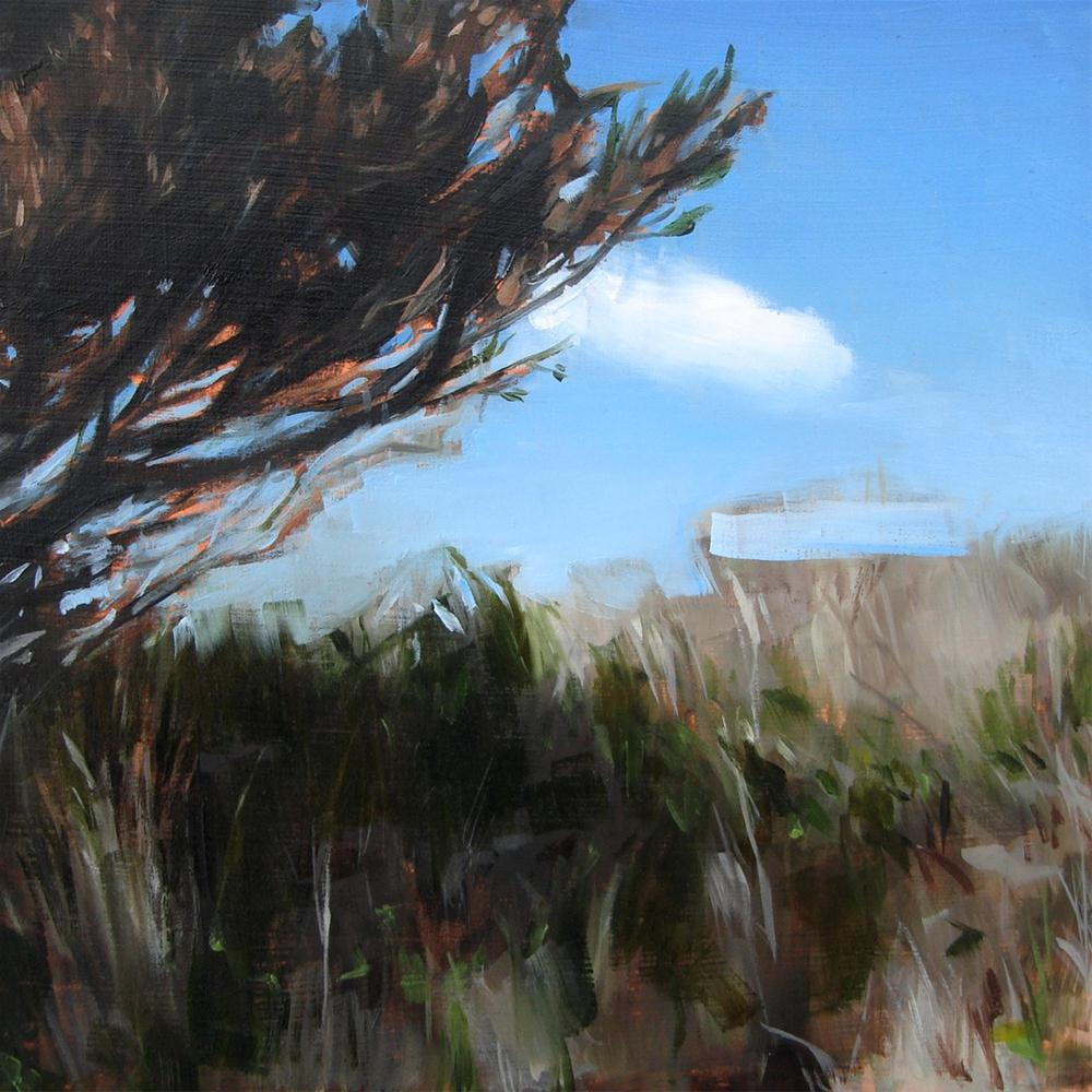 """Aquinna Shade, Martha's Vineyard, MA (no.44)"" original fine art by Michael William"