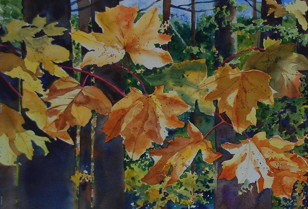 """Autumn Sun"" original fine art by Mary Anderson"