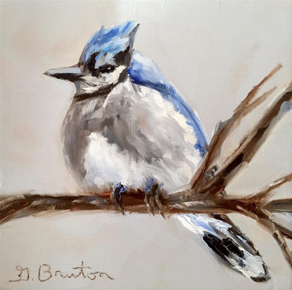 """Fluffy Blue Jay"" original fine art by Gary Bruton"