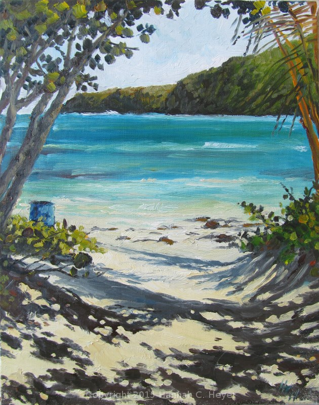 """Playa  Flamenco"" original fine art by Hannah C. Heyer"