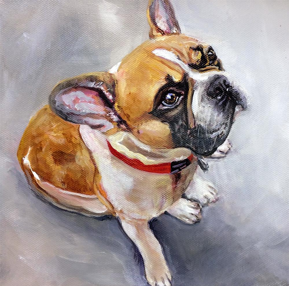 """Mr. Finley"" original fine art by Sunny Avocado"