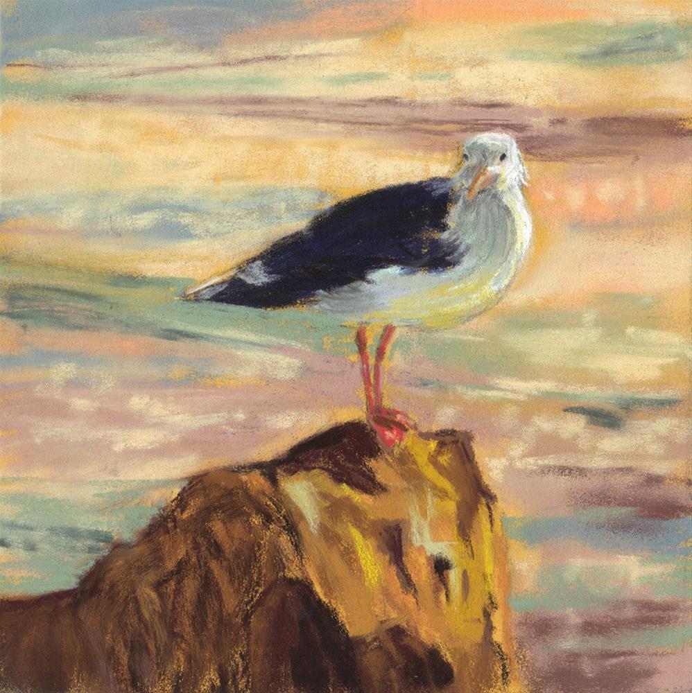 """Sunning Seagull"" original fine art by Sherri Cassell"