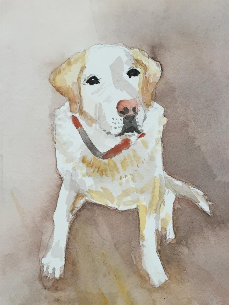 """White-ish"" original fine art by Cindy McDonough"