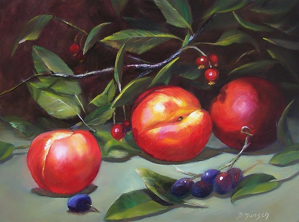 """Nectarines"" original fine art by Donna Munsch"