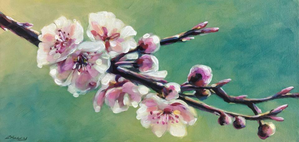 """Blush"" original fine art by Angela Hardy"
