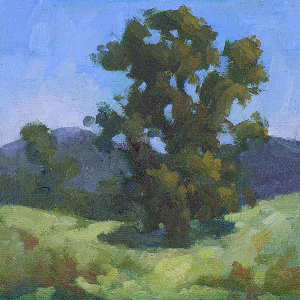 """The Eucalyptus King"" original fine art by Mary Mulvihill"