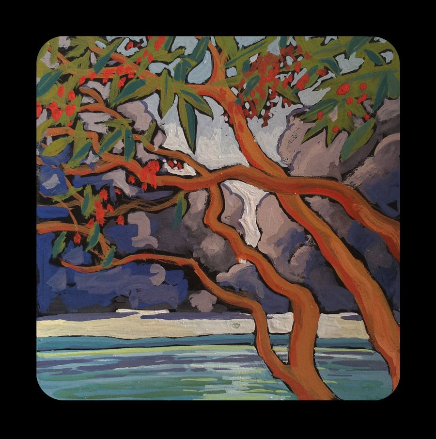 """3.06 Cloudberry Arbutus"" original fine art by Jan Poynter"