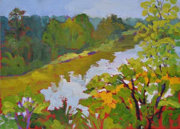 """Above the Broad River"" original fine art by Lucinda Howe"