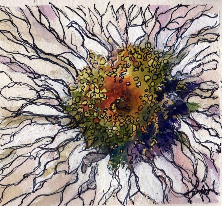 """White Beauty"" original fine art by Sue Dion"