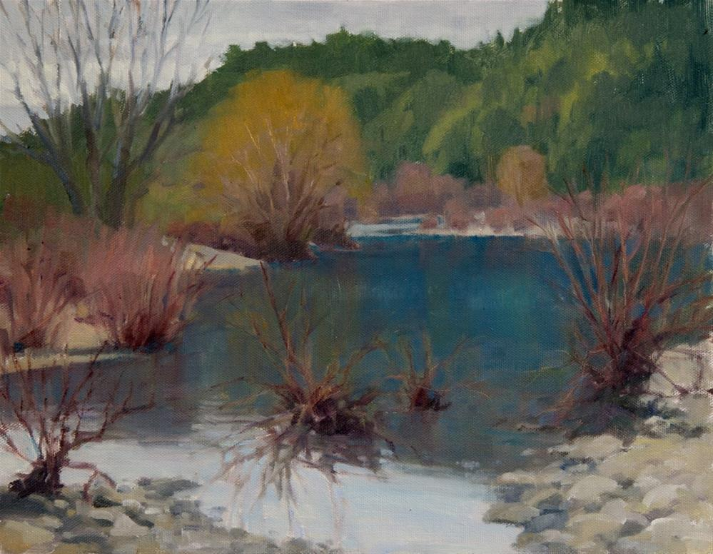 """""""Winter Willows On The Eel River"""" original fine art by Kathy O'Leary"""