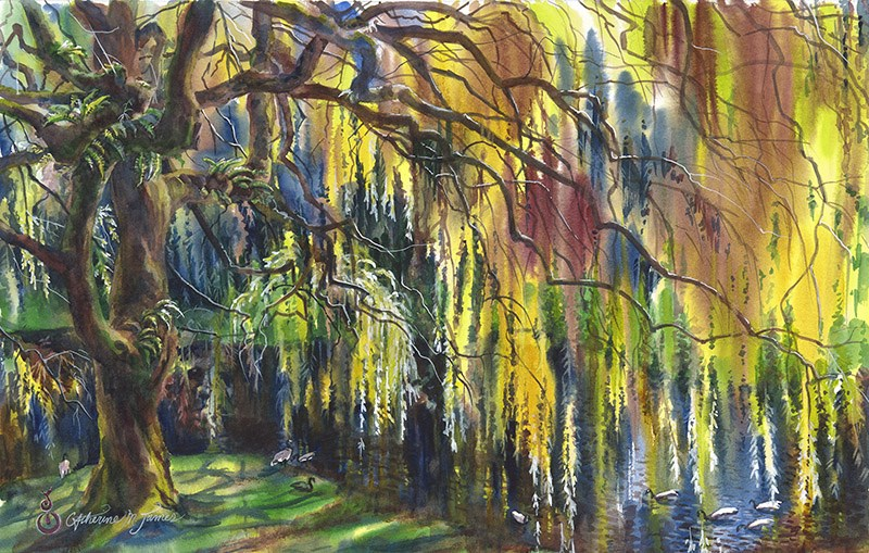 """Within the Willow"" original fine art by Catherine M. James"