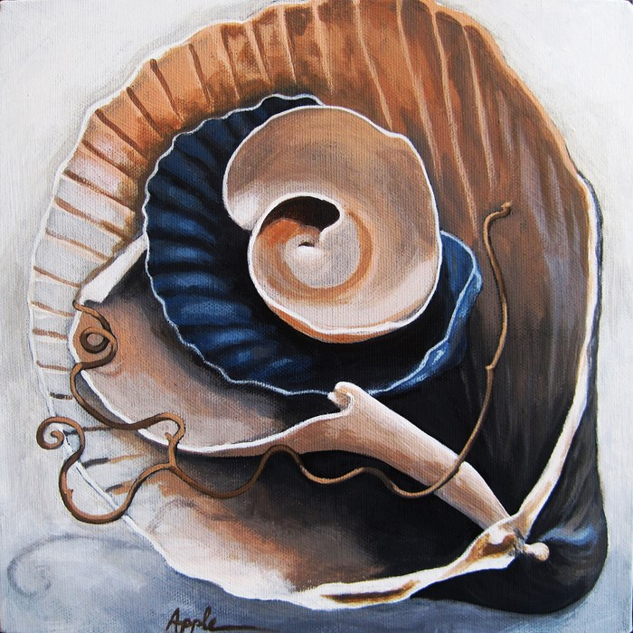 """Seashells by the Seashore realistic still life"" original fine art by Linda Apple"