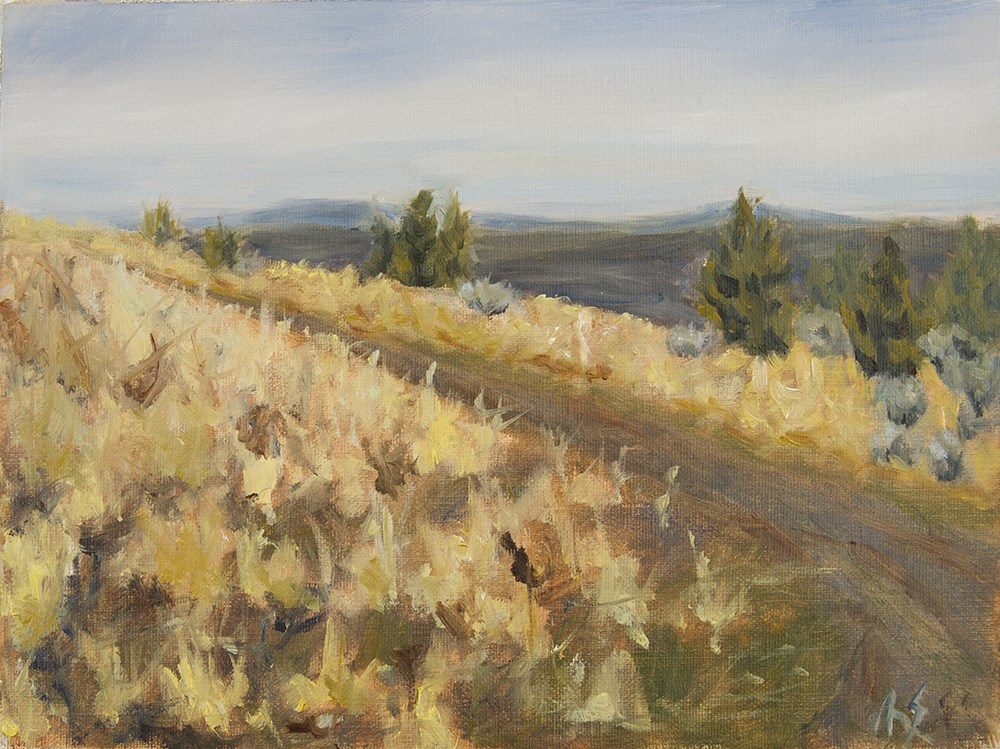 """""""View from the hill 2016"""" original fine art by Rachel Steely"""