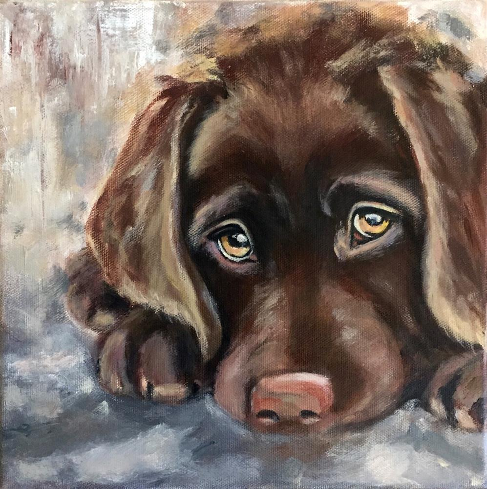 """Shelby"" original fine art by Melissa Gresham"