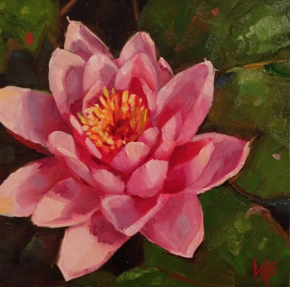 """Pink Water Lily"" original fine art by Krista Eaton"