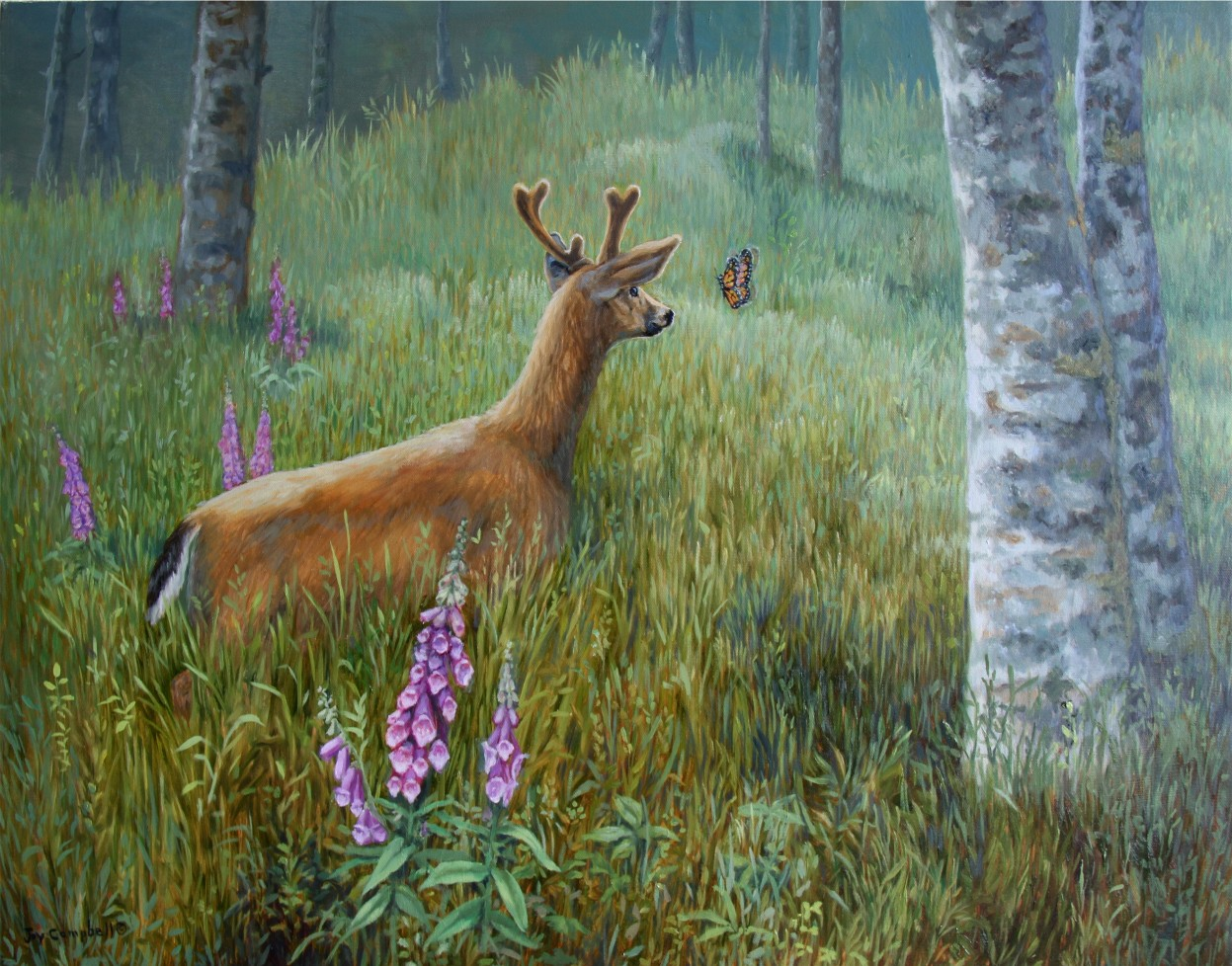 """Yearling Buck"" original fine art by Joy Campbell"