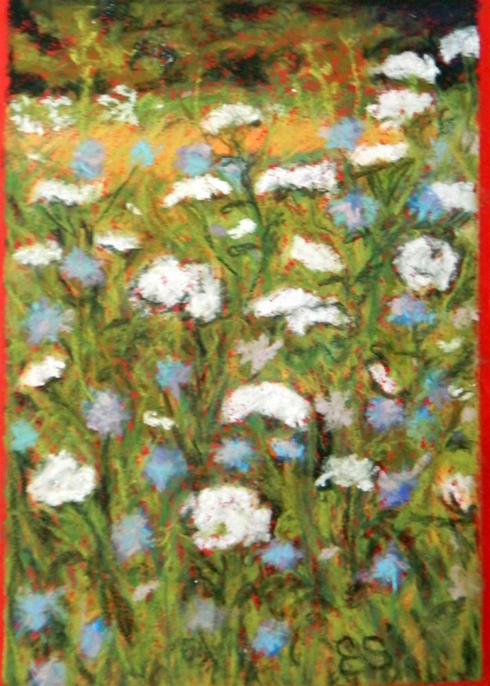 """Field of Queen Annes' Lace and Bachelor Buttons"" original fine art by Elaine Shortall"