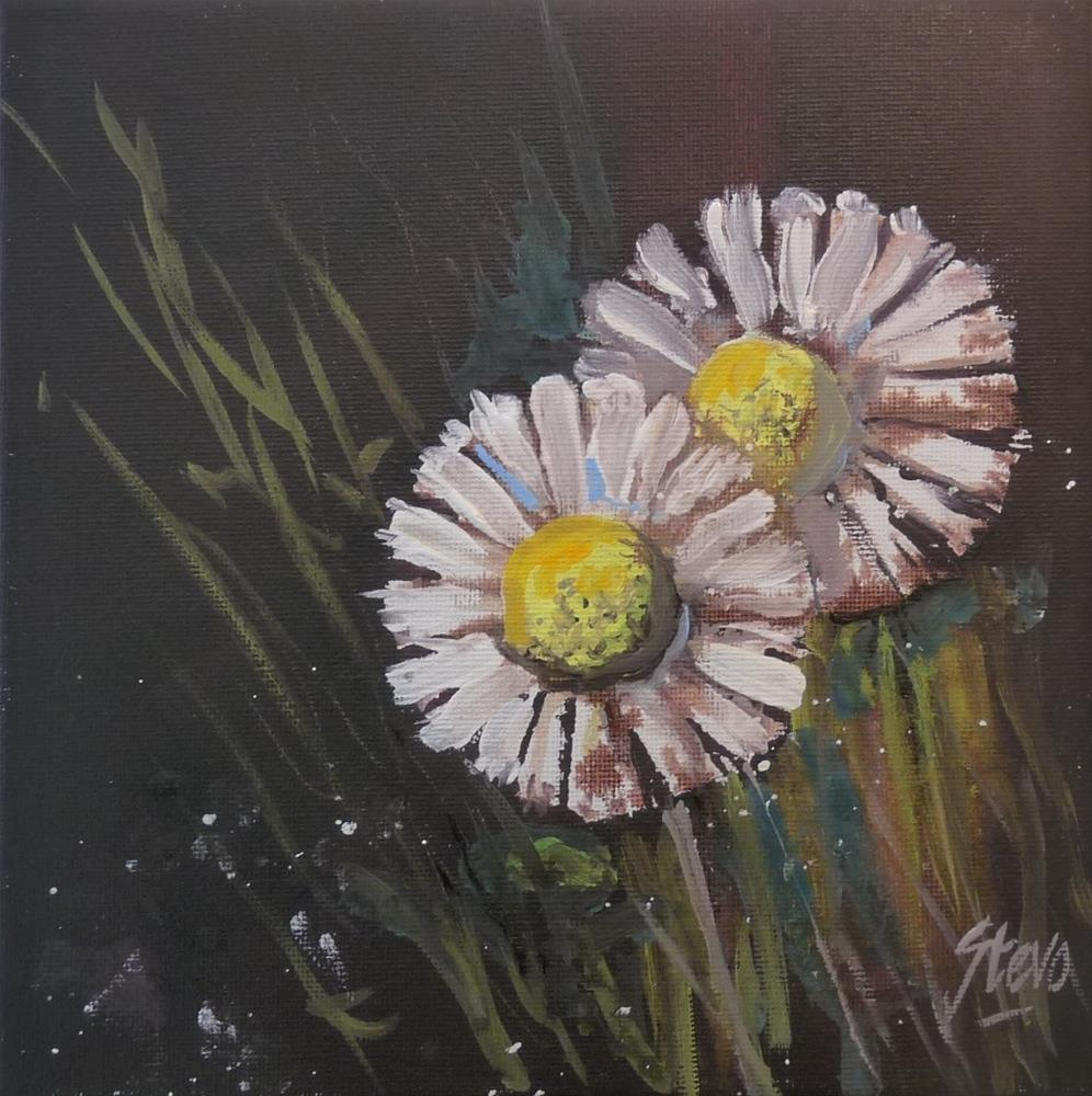 """Two Daisies"" original fine art by Martin Stephenson"