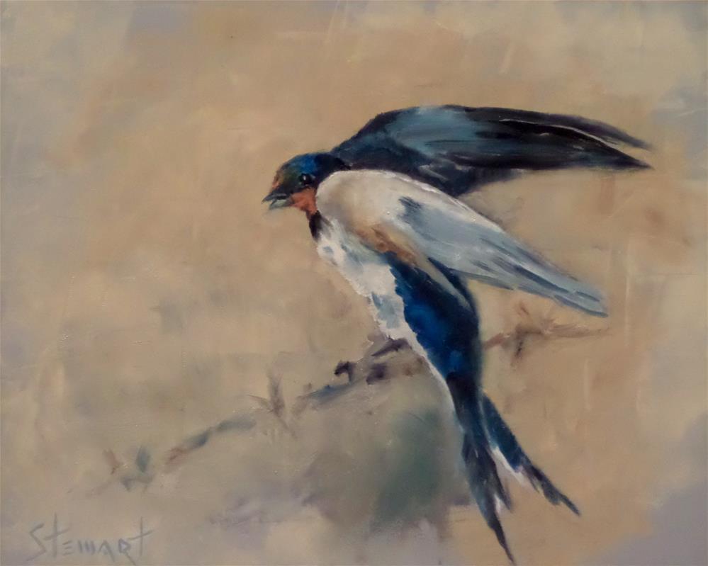 """""""BARN SWALLOW"""" original fine art by Kris Stewart"""