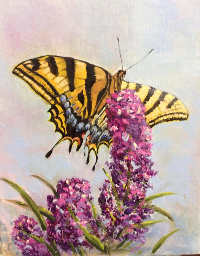"""Swallowtail on Butterfly Bush"" original fine art by Charlotte Lough"