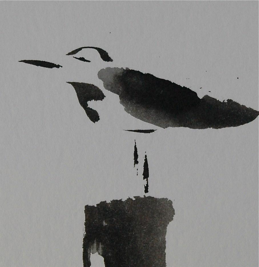 """Seagull, awake"" original fine art by Ulrike Schmidt"