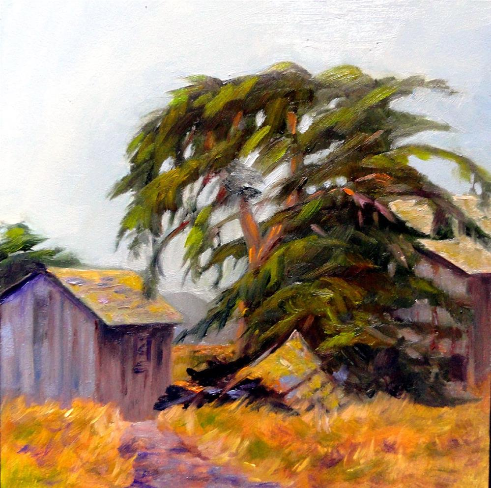 """Old Collapsed Shed"" original fine art by Cietha Wilson"