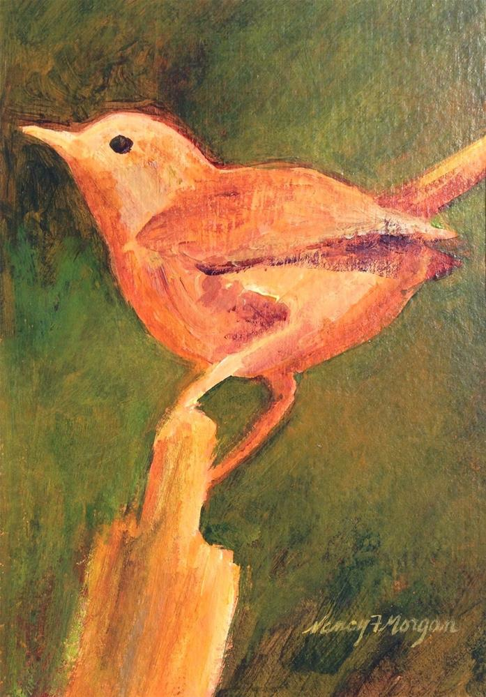 """House Wren"" original fine art by Nancy F. Morgan"