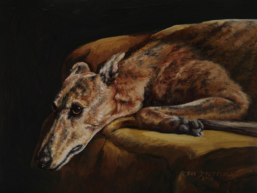 """Greyhound"" original fine art by Sue Deutscher"