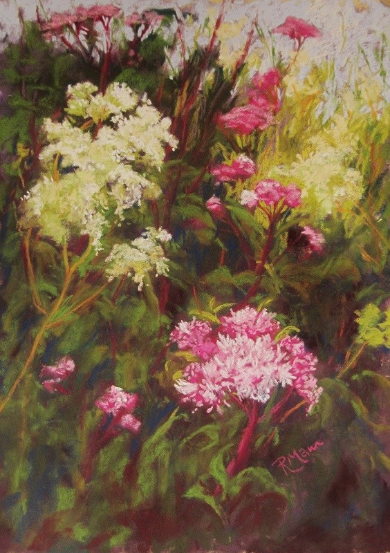 """Meadowsweet and Joe Pye weed"" original fine art by Ruth Mann"