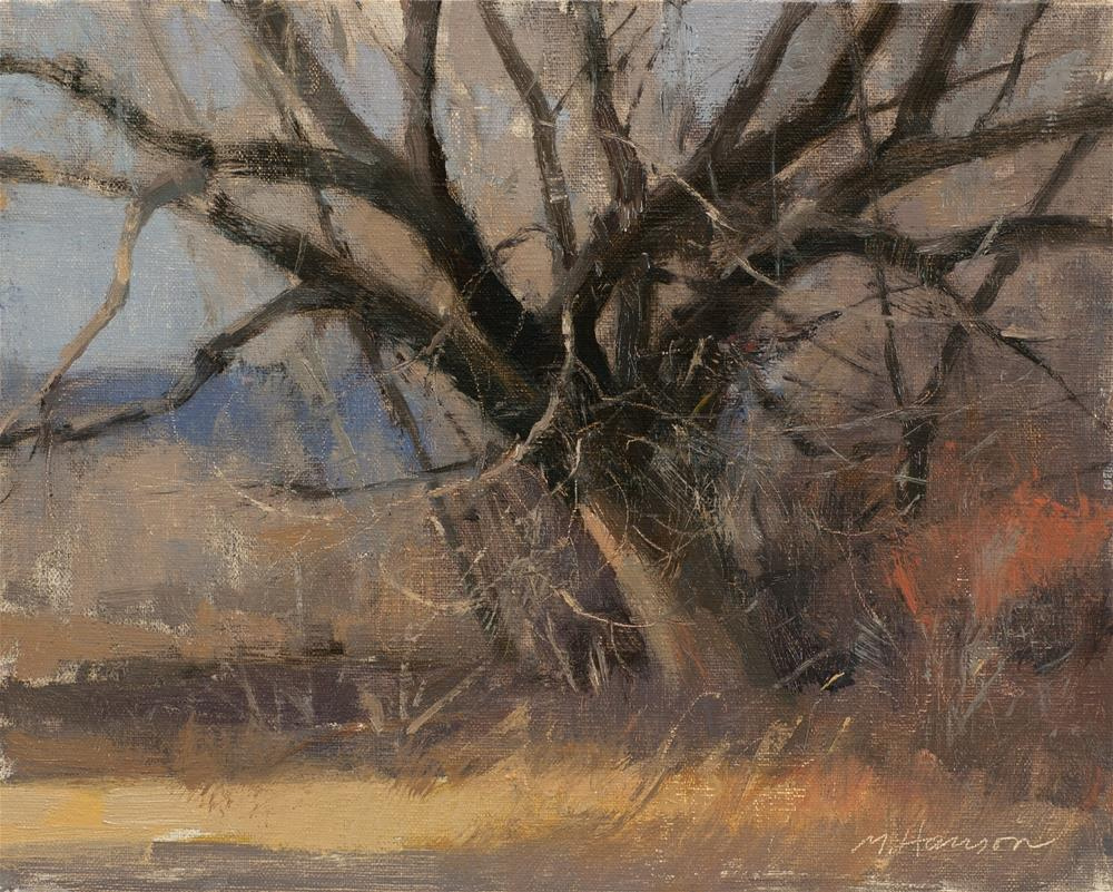 """2-22-3 South Boulder Creek 3"" original fine art by Marc Hanson"