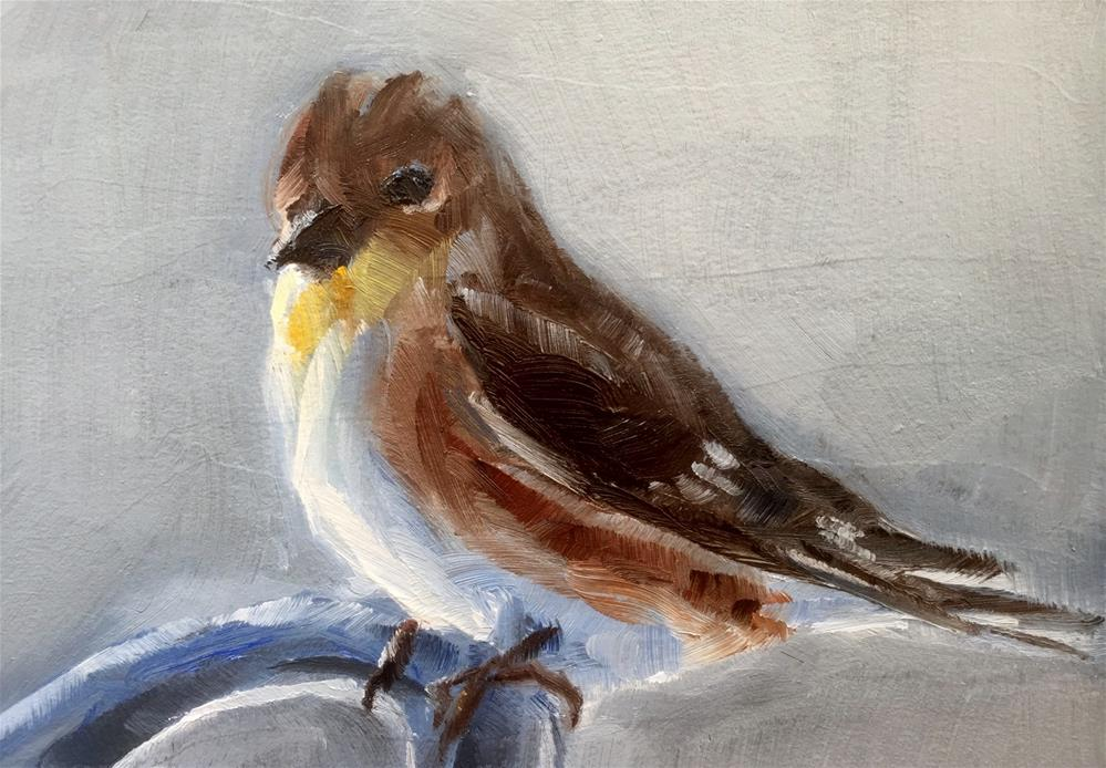 """Goldfinch, Winter"" original fine art by Gary Bruton"