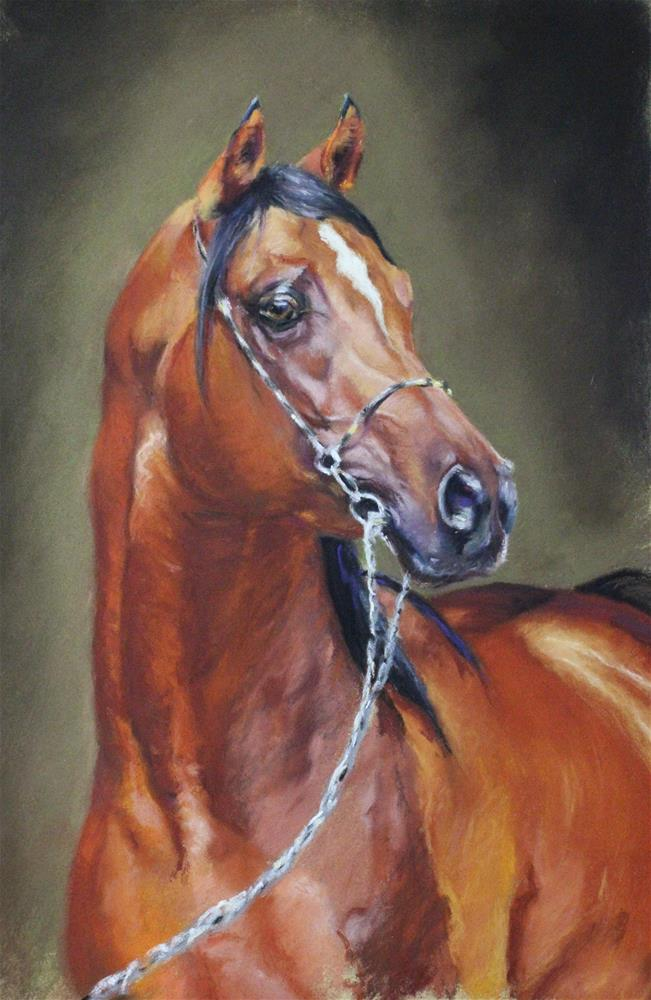 """horse portrait"" original fine art by Marco Vazquez"