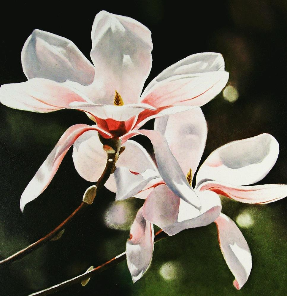 """Spring Magnolias"" original fine art by Jacqueline Gnott, whs"